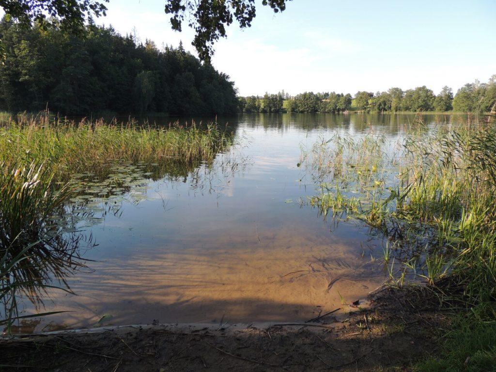 Near lake