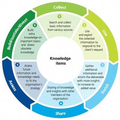 knowledge management - knowledge life cycle
